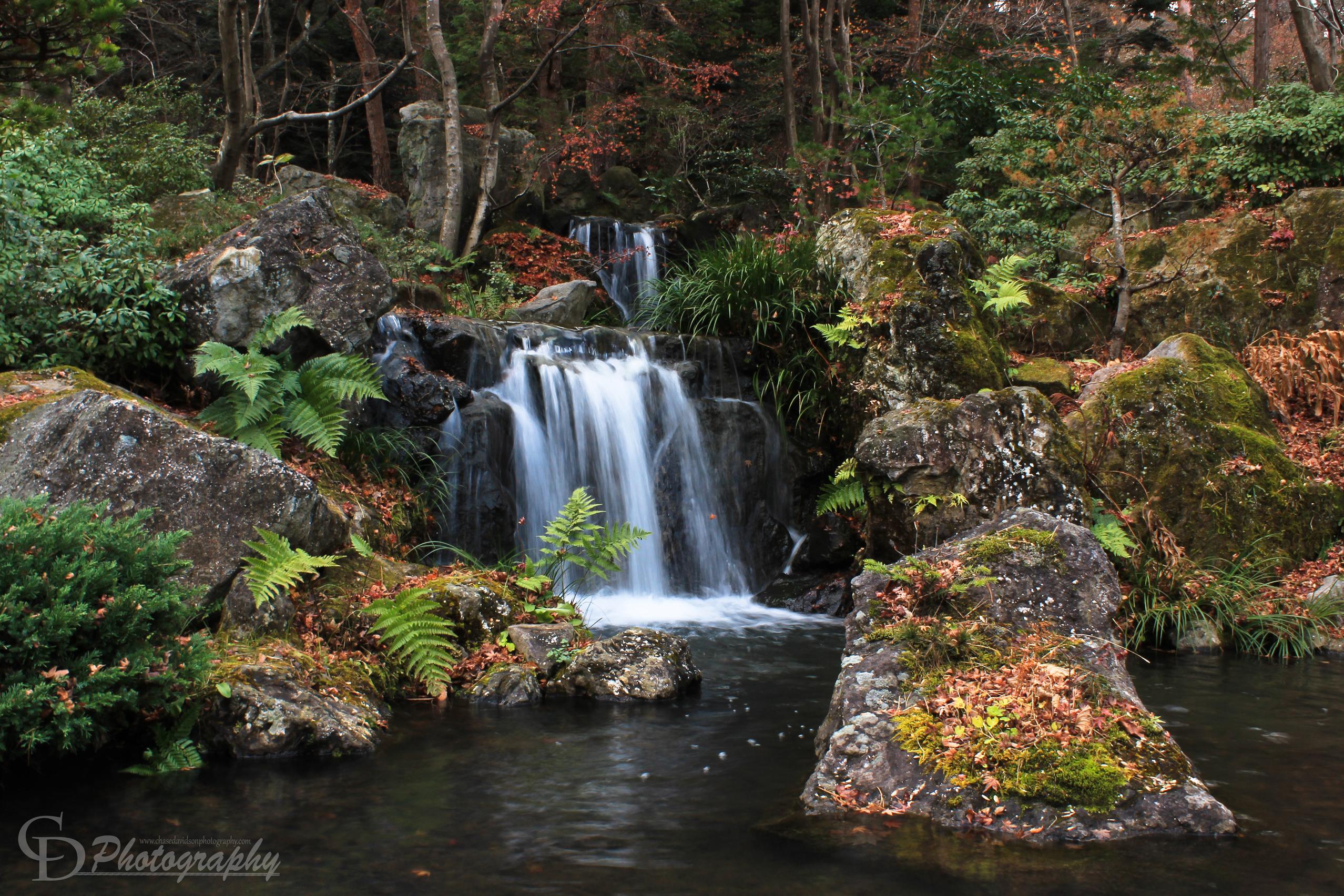 Shirakawa Garden CDP