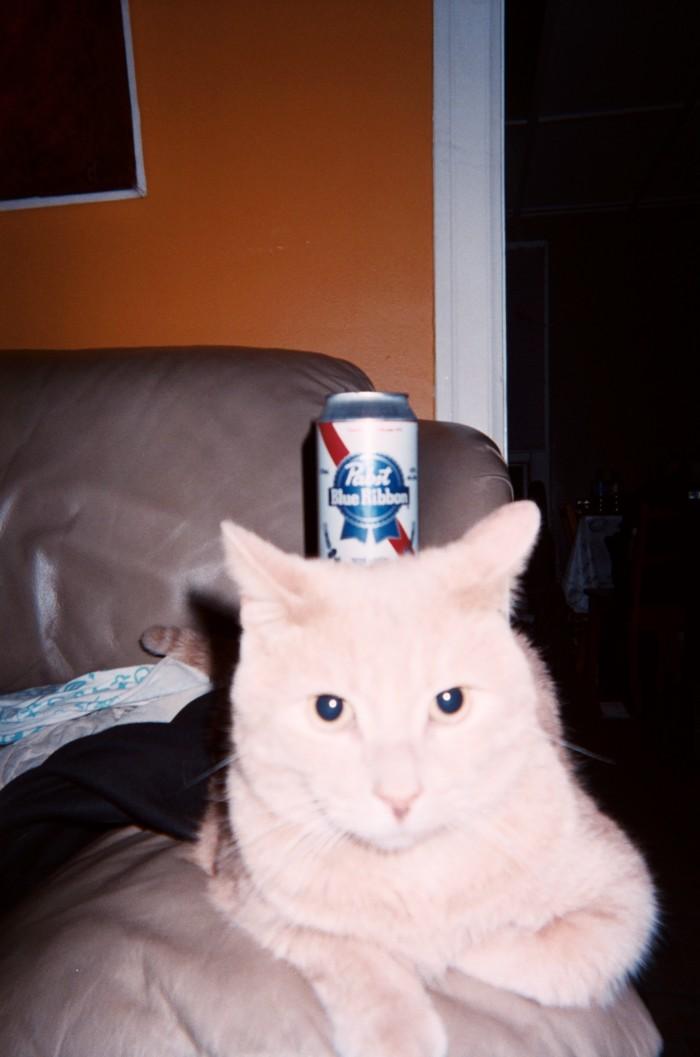 Best beer holder